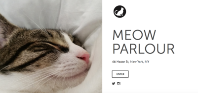 meow parlor nyc